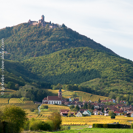 The castle Haut Koenigsbourg overlooking the Alsace wine route