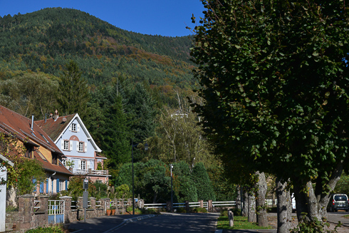 The village of La Vancelle enjoys a privileged location on the southern hillside of the mountain. At the heart of a magnificent forest, it is an exceptional site just a few minutes drive from the Alsace wine.